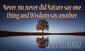 Wisdom and Nature Are Same