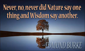 Wisdom and Nature Are Synced